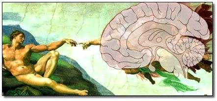 Hand or Brain